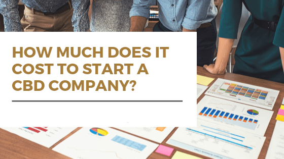 How much does it cost to start a cbd company?